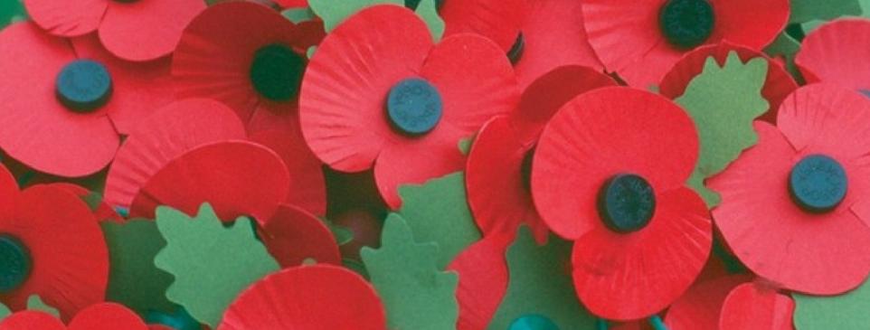 Poppies - 962 x 365